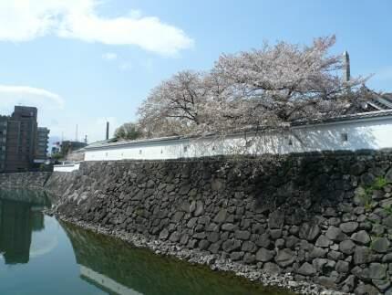 甲府城跡4.jpg