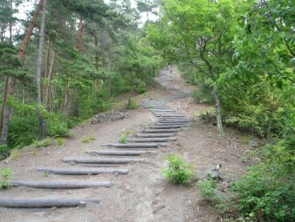 砥石城へ続く道1.jpg
