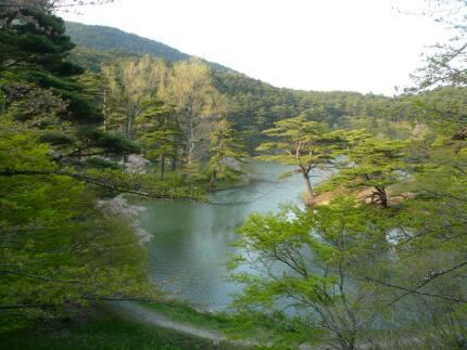半田山自然公園2.jpg