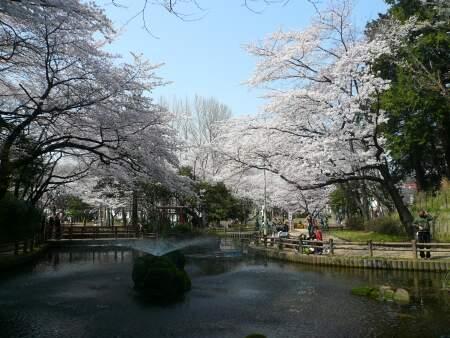 与野公園201002.jpg
