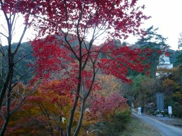 鳥居観音の紅葉