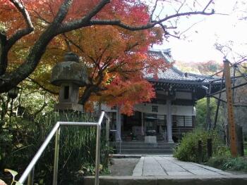 安国論寺鎌倉紅葉1.jpg