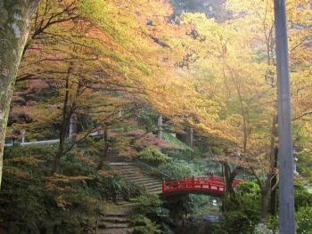 横蔵寺紅葉3.jpg