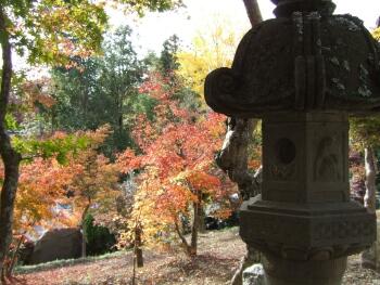 小鹿神社紅葉2