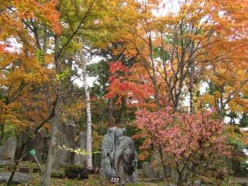浅間火山岩石公園2.jpg
