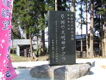 草岡の大明神桜碑.jpg
