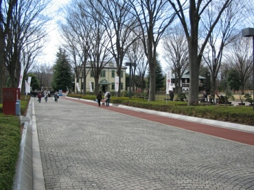 府中郷土の森1.jpg