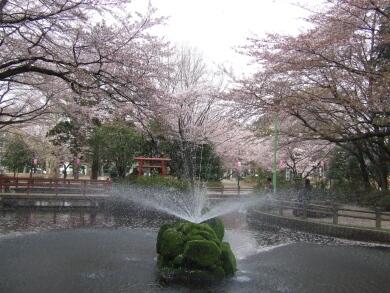 与野公園.jpg