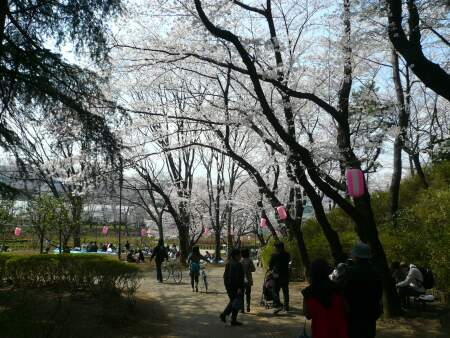 与野公園201001.jpg