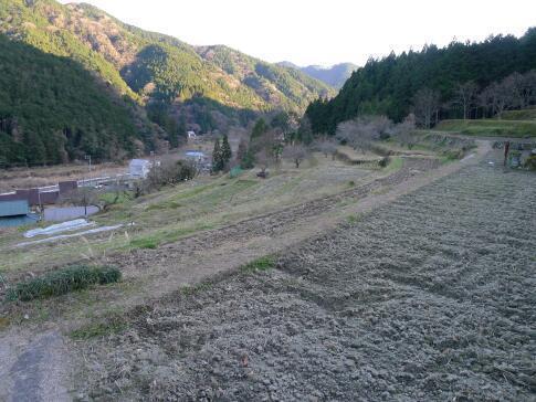 上稲子の棚田4.jpg