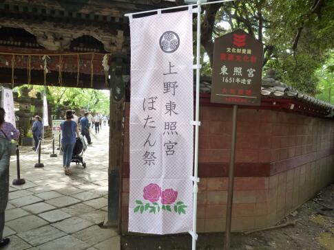 上野東照宮ぼたん園.jpg