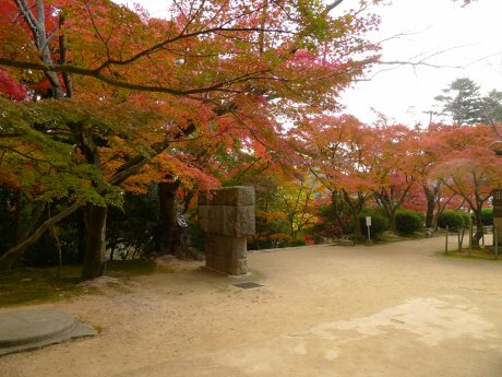 功山寺の紅葉2.jpg