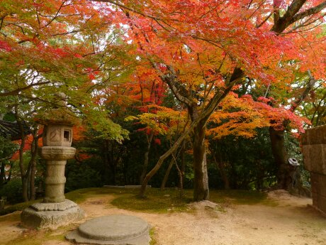 功山寺の紅葉3.jpg