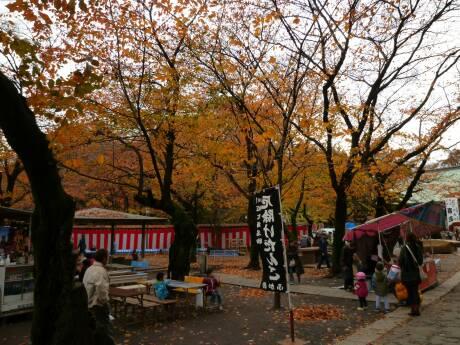 喜多院 紅葉20104.jpg