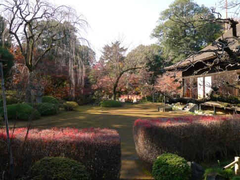 喜多院庭園の紅葉3.jpg