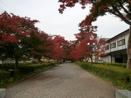 大山参道2.jpg