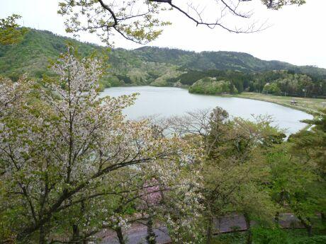 尾浦城趾からの風景3.jpg