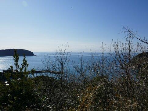 岡本城からの景色2.jpg