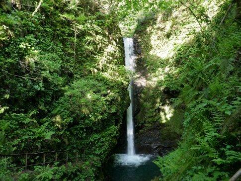 岩室の滝3.jpg