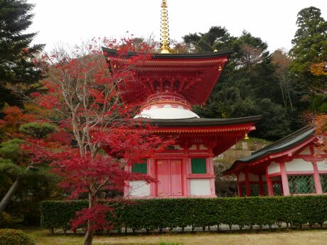 常福寺 福島3.jpg