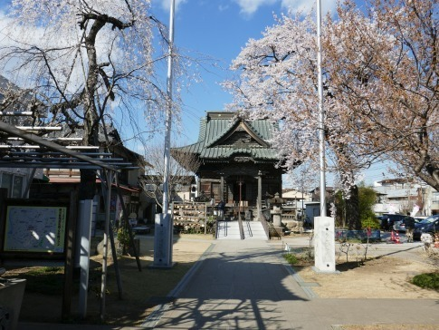 慈眼寺の桜201901.jpg