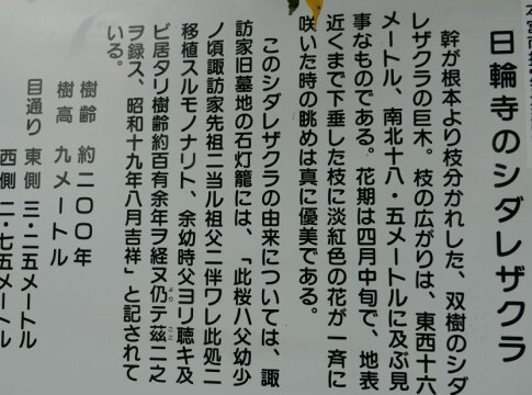 日輪寺4.jpg