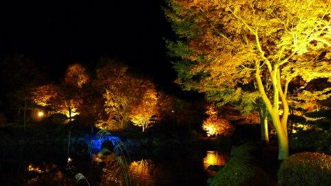 桜山公園の夜景9.jpg