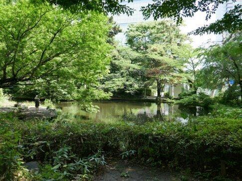 清水谷公園2.jpg