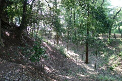 滝の城 濠跡.jpg