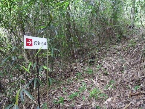 真名子城2.jpg