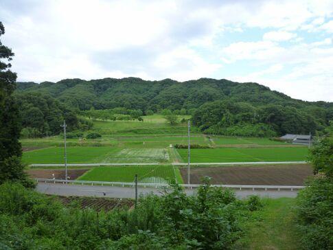 真名子城6.jpg