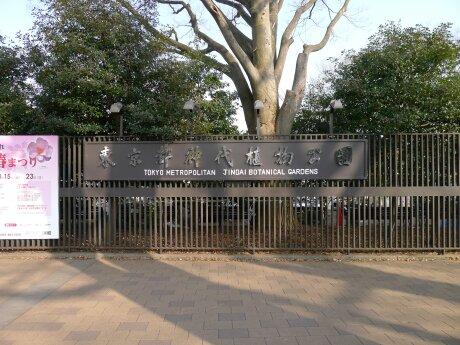 神代植物園.jpg