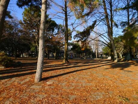 膳所城3.jpg