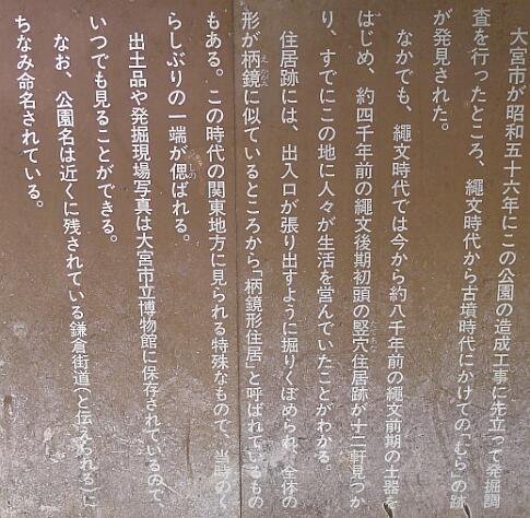 鎌倉公園.jpg