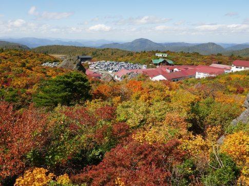 須川高原の紅葉4.jpg
