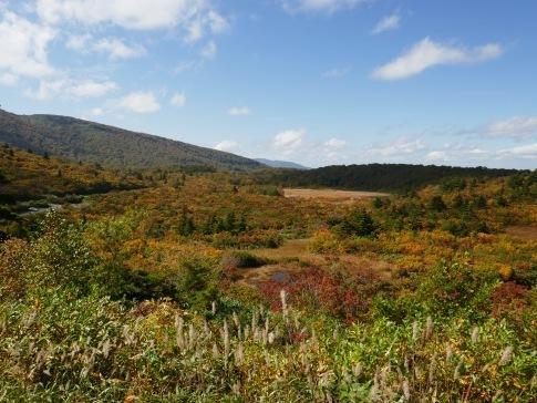 須川高原の紅葉1.jpg