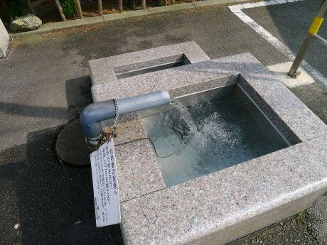 高瀬湧き水の庭.jpg