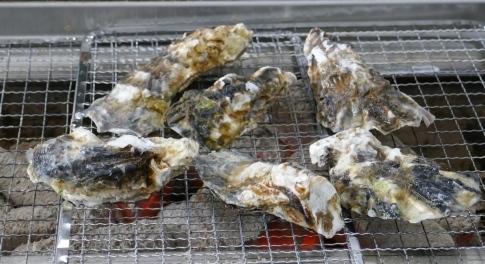 魚市魚座で海鮮丼2.jpg