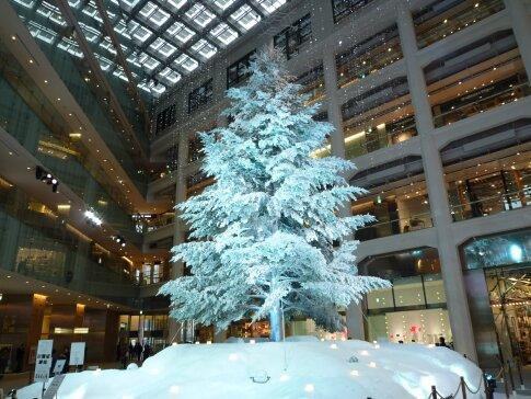 KITTE クリスマスツリー.jpg