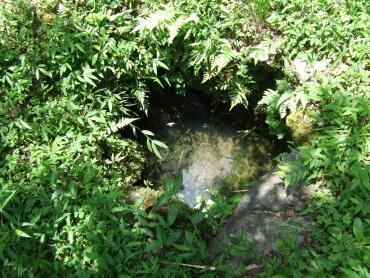 石田三成水くみの井戸