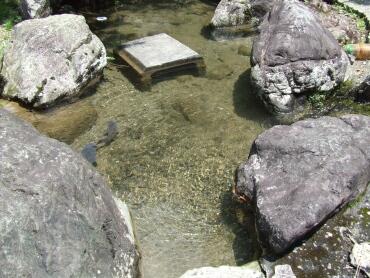 泉神社の湧き水 日本名水100選