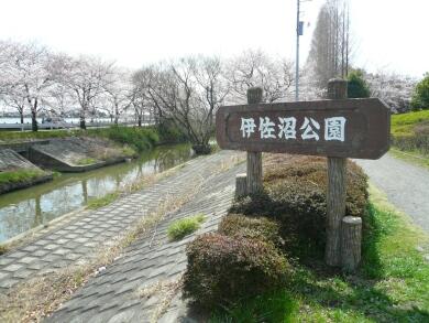 伊佐沼公園