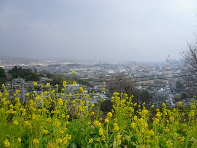 円通寺 玉島の風景