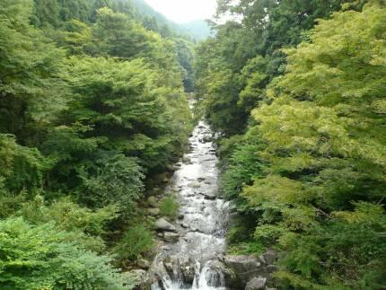 河内渓谷2.jpg