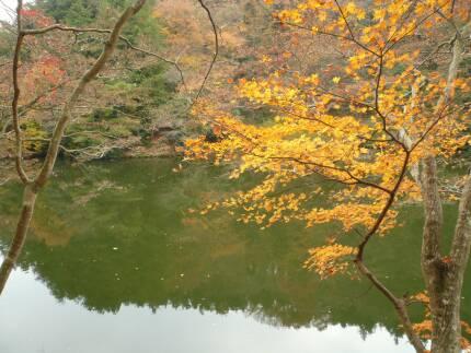 鎌北湖 紅葉3.jpg
