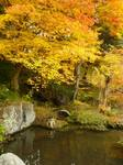 景徳院庭園