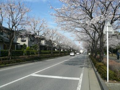 御伊勢塚公園