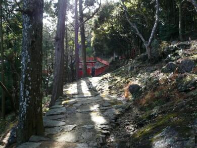神倉神社_急な道