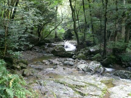 菅生の滝3.jpg