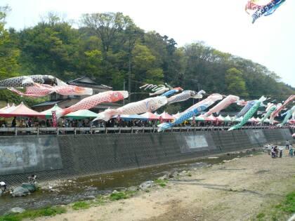 大谷川鯉のぼりフェスティバル1.jpg
